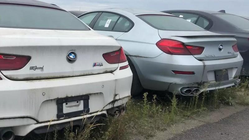 В Канаде обнаружили более трех тысяч брошенных BMW и MINI  2